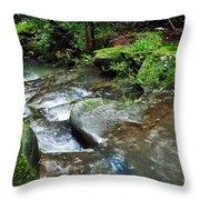 Pretty Green Creek Throw Pillow by Kaye Menner