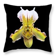 Pretty Paphiopedilum Orchid Ver. 2 Throw Pillow by Susan Wiedmann