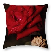 Promise Of Tomorrow Throw Pillow by DigiArt Diaries by Vicky B Fuller