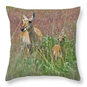 Pronghorn Doe And Fawn Throw Pillow by Karon Melillo DeVega