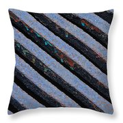 Protection Throw Pillow by Lisa  Phillips