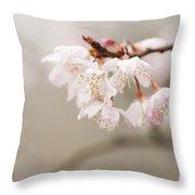 Prunus hirtipes Throw Pillow by Anne Gilbert
