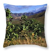 Puerto Rico Cayey Mountains Near Salinas Throw Pillow by Thomas R Fletcher