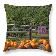 Pumpkins On The Farm Throw Pillow by Joann Vitali
