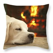 Puppy Sleeping By The Fireplace Throw Pillow by Diane Diederich