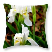 Purity In Pairs Throw Pillow by Kathy  White