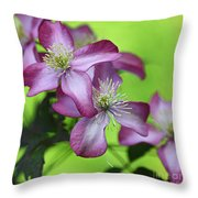 Purple Clematis Throw Pillow by Sylvia Cook