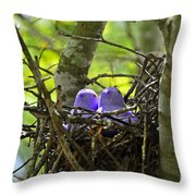 Purple Peeps Pair Throw Pillow by Al Powell Photography USA