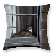 Purrfect Throw Pillow by Kathy Bassett