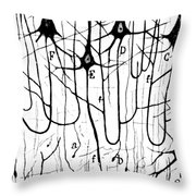 Pyramidal Cells Illustrated By Cajal Throw Pillow by Science Source