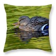 Quack Throw Pillow by Sharon Talson