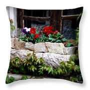 Quaint Stone Planter Throw Pillow by Lainie Wrightson