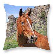 Quarter Horse Portrait Montana Throw Pillow by Jennie Marie Schell