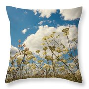 Queen Anne Lace and Sky Throw Pillow by Jenny Rainbow