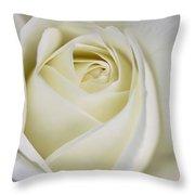 Queen Ivory Rose Flower 2 Throw Pillow by Jennie Marie Schell