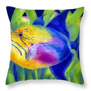 Queen Triggerfish Throw Pillow by Stephen Anderson