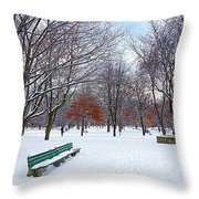 Queen's Park Throw Pillow by Valentino Visentini