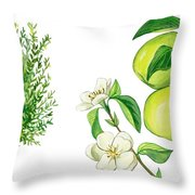 Quince Tree Throw Pillow by Anonymous