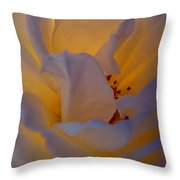 Radiance Throw Pillow by Cathleen Cario-Reece