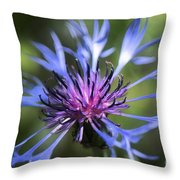 Radiant Flower Throw Pillow by Belinda Greb