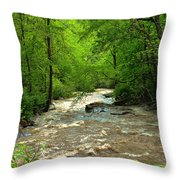 Raging Waters - West Virginia Backroad Throw Pillow by Paulette B Wright