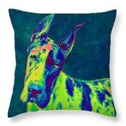Rainbow Dane Throw Pillow by Jane Schnetlage