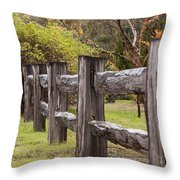 Raindrops On Rustic Wood Fence Throw Pillow by Michelle Wrighton