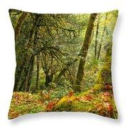 Rainforest Trunk Throw Pillow by Adam Jewell