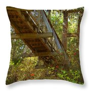 Ravine State Gardens Palatka Florida Throw Pillow by Christine Till