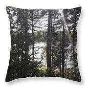 Ray O Light Throw Pillow by Melissa McCrann