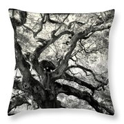 Reaching For Heaven Throw Pillow by Karen Wiles