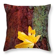 Reclamation Throw Pillow by Mike  Dawson