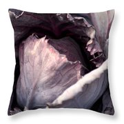 Red Cabbage Throw Pillow by Maria Urso