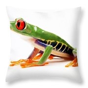 Red-eye Tree Frog 4 Throw Pillow by Lanjee Chee
