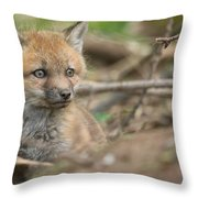 Red Fox Kit Throw Pillow by Everet Regal