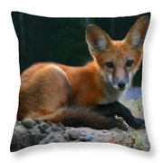 Red Fox Throw Pillow by Kristin Elmquist
