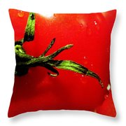 Red Hot Tomato Throw Pillow by Karen Wiles