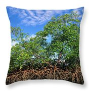 Red Mangrove East Coast Brazil Throw Pillow by Pete Oxford