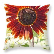 Red Sunflower Glow Throw Pillow by Kerri Mortenson