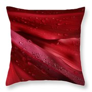 Red Ti The Queen Of Tropical Foliage Throw Pillow by Sharon Mau