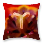 Red Tulip Abstract Throw Pillow by Rona Black