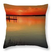 Red Water Throw Pillow by Phill  Doherty
