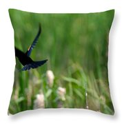 Red Winged Blackbird Throw Pillow by Andrew Lahay