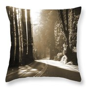 Redwood Drive Throw Pillow by Mike McGlothlen