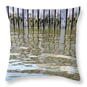 Reflection Of Fence  Throw Pillow by Sonali Gangane