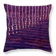 Reflection Throw Pillow by Rona Black