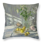 Reflections And Shadows  Throw Pillow by Timothy  Easton