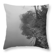 Reflections In Black And White Throw Pillow by Dan Sproul