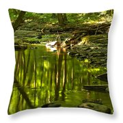 Reflections In Hells Hollow Creek Throw Pillow by Adam Jewell