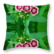 Reflections of a Summer Bouquet Throw Pillow by Aimee L Maher Photography and Art
